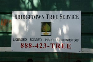 Bridgetown Tree Service
