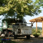 Brush Chipping - Bridgetown Tree Service