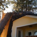 Storm Damage - Bridgetown Tree Service
