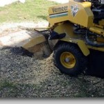 Stump Grinding - Bridgetown Tree Service