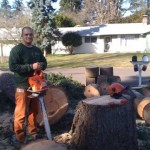 Zane Wood - Bridgetown Tree Service
